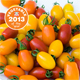 Thompson & Morgan names exclusive tomato mix its 'Veg of the Year'