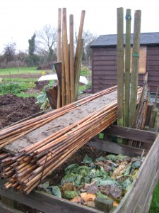 Canes stored away