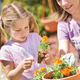 Gardening to be taught in schools