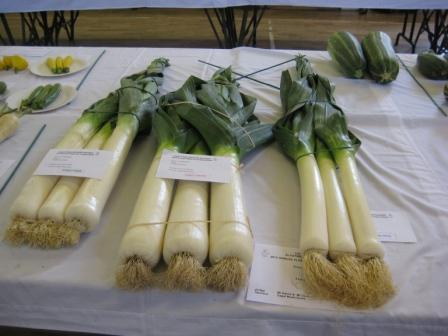 Leek class , mine came 2nd are the set on the right , John Mowers winning set in centre and Gavins 3rd on left