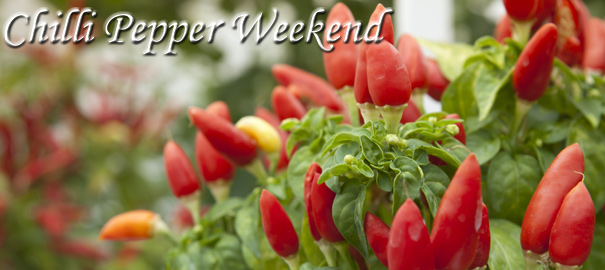 Chilli Pepper Weekend – 27th/28th September