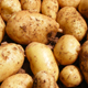 Potatoes – does size matter?