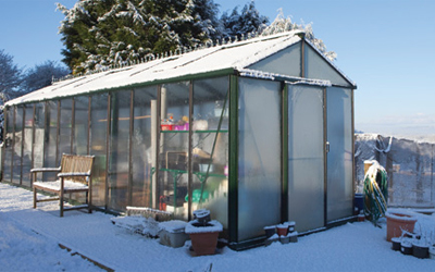 A year in the greenhouse – Amanda