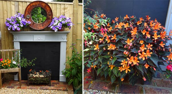 Geoff's garden fireplace and Begonia 'Glowing Embers'
