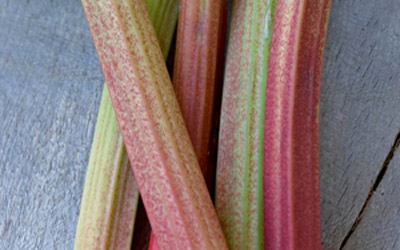 Thompson & Morgan Rhubarb beats forced 'Golden Triangle' produce to market by three weeks
