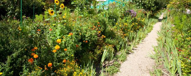 Claude Monet late summer garden