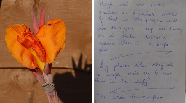 Calla Lilly & useful notes in 1995 notepad