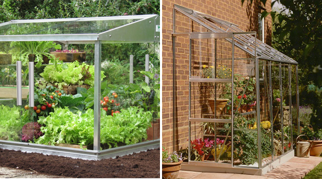Cold frame & Lean-to greenhouse