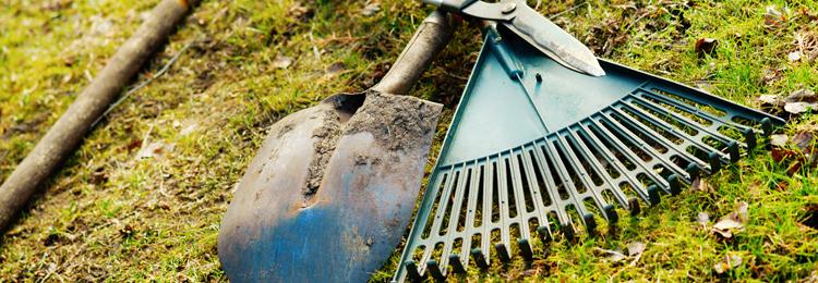 garden tools needing a vlean